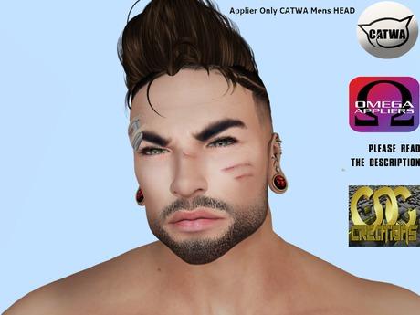 .:: CDC HUd Beard #2  ** UNPACK**