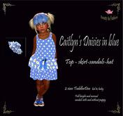 Caitlyn's Daisies in blue kk