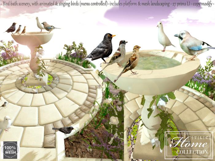 Birdbath, bird, bath, songbird