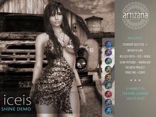 Artizana - Iceis Collection (Demo) - Mesh Dress