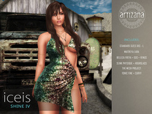 Artizana - Iceis Shine IV - Mesh Dress