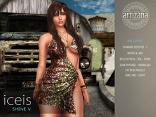 Artizana - Iceis Shine V - Mesh Dress