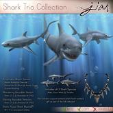 JIAN :: Shark FATPACK