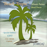 "[CIRCA] - ""Beach Tropic"" - Miami Palms - Motif Decor Gift (SE)"