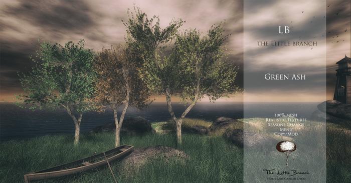 LB GreenAsh Tree 4 Seasons Mesh