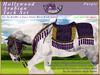 *E* Hollywood Arabian Saddle Set [Boxed] RH Gypsy Vanner Purple