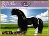 *E* RealHorse Mystical Mane & Tail Set [BOXED] RH Gypsy Vanner
