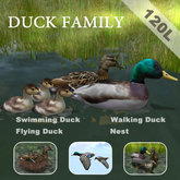 Swimming Duck Family(copyable, feedable)