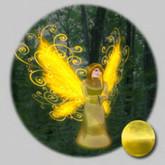 WW_Egg Uncommon Glitter_Goldenrod Fairy 5.0.0