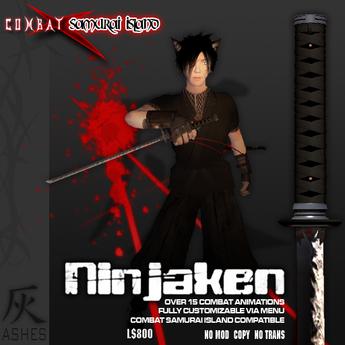 Ashes Ninjaken