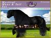 *E* RealHorse Mystical Mane & Tail Set [BOXED] RH Friesian