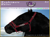 *E* Wyndermere Halter [BOXED] RH Friesian Red