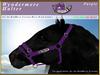 *E* Wyndermere Halter [BOXED] RH Friesian Purple