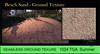 Beach Sand Texture 3D SEAMLESS by Vita 1024 TGA 2016