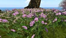CJ Field of Verbana Geraniumsa + Wildflower + Wind effect