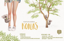 MishMish - Koala COMPANION ONLY
