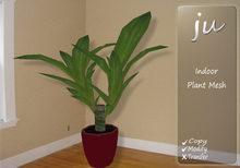 JU Indoor Plant  Mesh