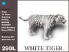 White tiger box