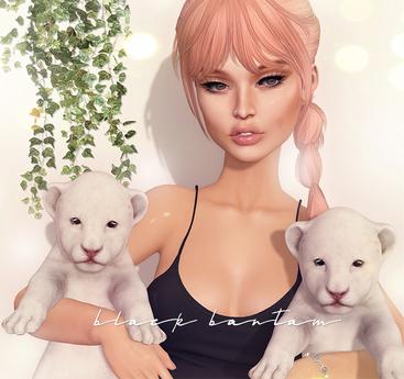 [Black Bantam] White Lion Cub Holdable Set