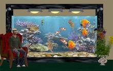 Waterworld Aquarium