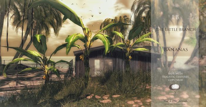 LB Banana Plant  Mesh
