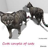 Elemiah Design - Cute couple of cats
