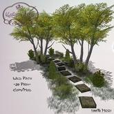 Kathy`s Garden Wild Path