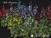 ~AB~ Hollyhock Flowers ~ Full Perm Mesh ~ 1 LI