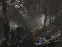 NEW!!! NIGHTMARE from THE ULTIMATE MULTISCENE by MysticalRentals.com
