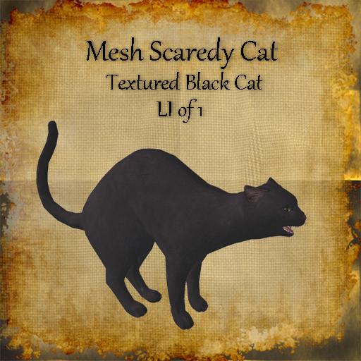 Bad Katz Scaredy Cat