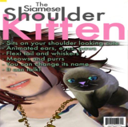The Siamese Shoulder Kitten