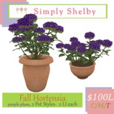 Simply Shelby Fall Hortensia - purple plum