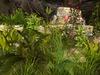 Msd   wall ruins garden   9 4a 001