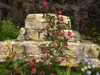 Msd   wall ruins garden   9 7a 001