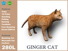 [TomatoPark] Ginger Cat Mesh 3.3 ( roaming + wearable )