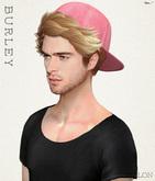 [BURLEY]_Troy_Sampler (wear)