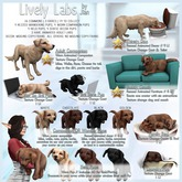 JIAN Lively Labs :: Golden Held Pup