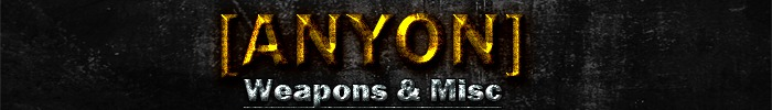 Anyon store banner