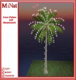 MN Coco Palms-tall-illuminated