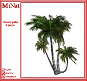 MN Group palm 4 piece