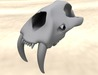 Mesh animal skull (Saber Tooth Feline) with textures *FULL PERM*