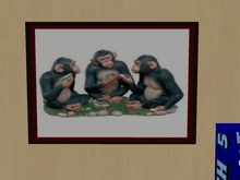 Picture - Poker Chimps