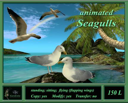 Seagulls animated
