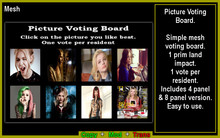 Picture Voting Board (Boxed)