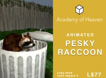 Animated Pesky Raccoon in Trash Can