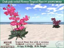 Tropical Plant Flower Dark pink orchid -1 prim-C/M