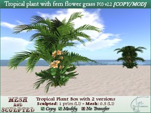 Tropical plant with fern flower grass. C/M P03