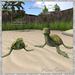 Animated Turtles