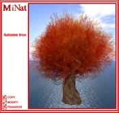 MiNat Autumn tree