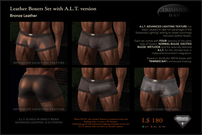 Leather Boxers - Bronze - with ADVANCED LIGHTING TEXTURE version